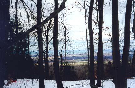 Osler Bluffs Blue Mountain 16